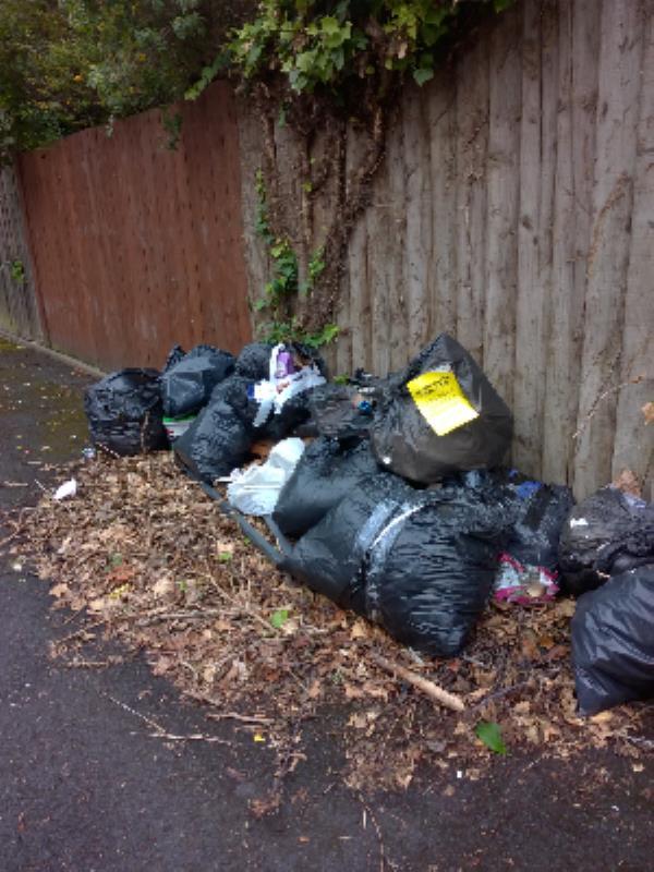garden waste, diy, domestic in Barnard Grove e15-15 Evesham Road, London, E15 4AL