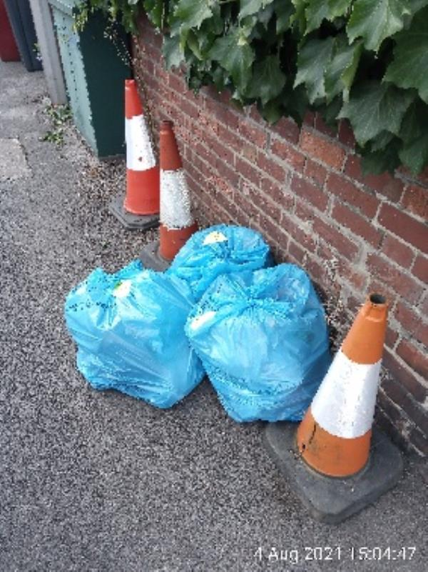 Three blue WBC bags on cardigan gardens. Have stickered and investigated. Please clear. -17 Cardigan Gardens, Reading, RG1 5QP