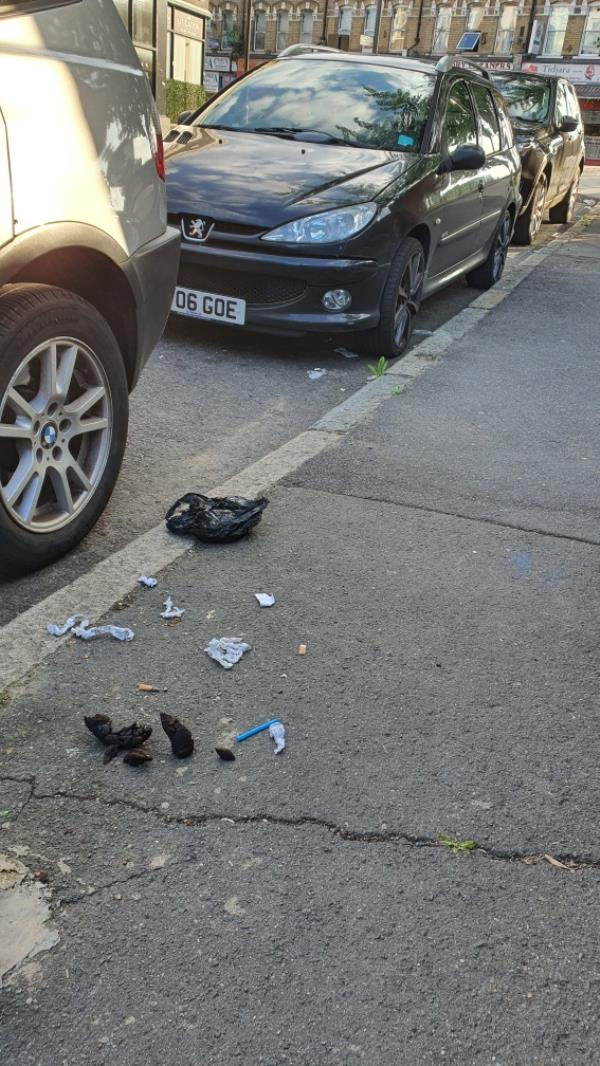 Large dog poo-6 Manbey Park Road, London, E15 1EY