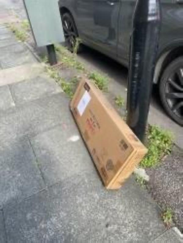 Large cardboard box from nearby resident according to address label who clearly recognises this favoured dumping ground-49 Boveney Road, London, SE23 3NN