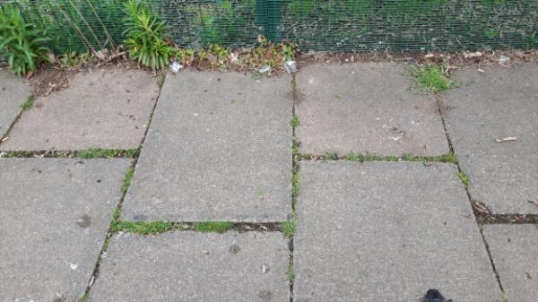 Broken beer bottle littering footway opposite Sturdee Close. -261 Sturdee Road, Leicester, LE2 9AH