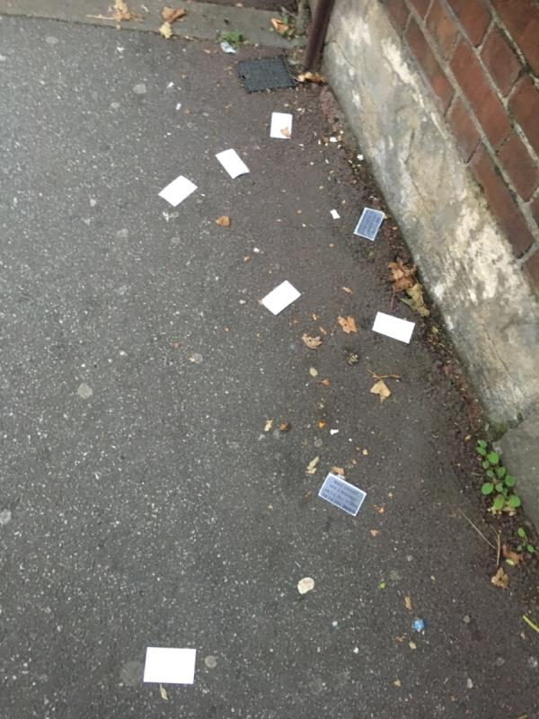 Street needs sweeping-110 Ruskin Avenue, Manor Park, E12 6PR