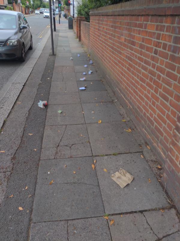 Lots of litter on Torridon Road-363 Hither Green Lane, London, SE13 6TJ