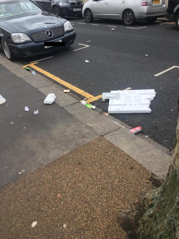 Beginning of Washington road end of alley way, lots of rubbish image 1-4 Washington Road, London, E6 1AJ