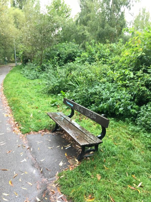 Graffiti all over bench -Lock Island Bungalow Thames Side, Reading, RG1 8BP