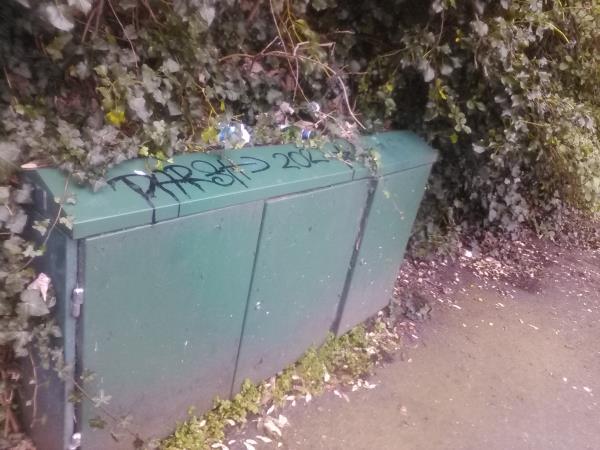 Graffiti is on the green metal telecommunications box on Lewisham Hill near the turning for Walerand Road.-86 Lewisham Hill, Blackheath, London SE13 7EL, UK