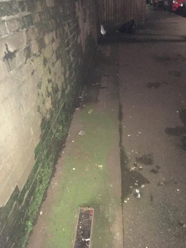 Ground coloured lights ( that were previously lit 24/7 for as far back as I can remember) Out since early 2019. Ground lights covers now missing so collecting rubbish . Why can't they be fixed? Area now dark & dirty image 1-1 Stracey Rd, Forest Gate, London E7 0HQ, UK
