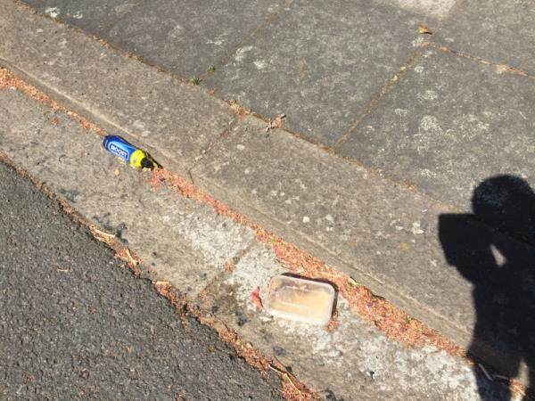 Discarded tray meal (with food contents intact); drinking and other litter-50 Beaufort Road, London, W5 3EA