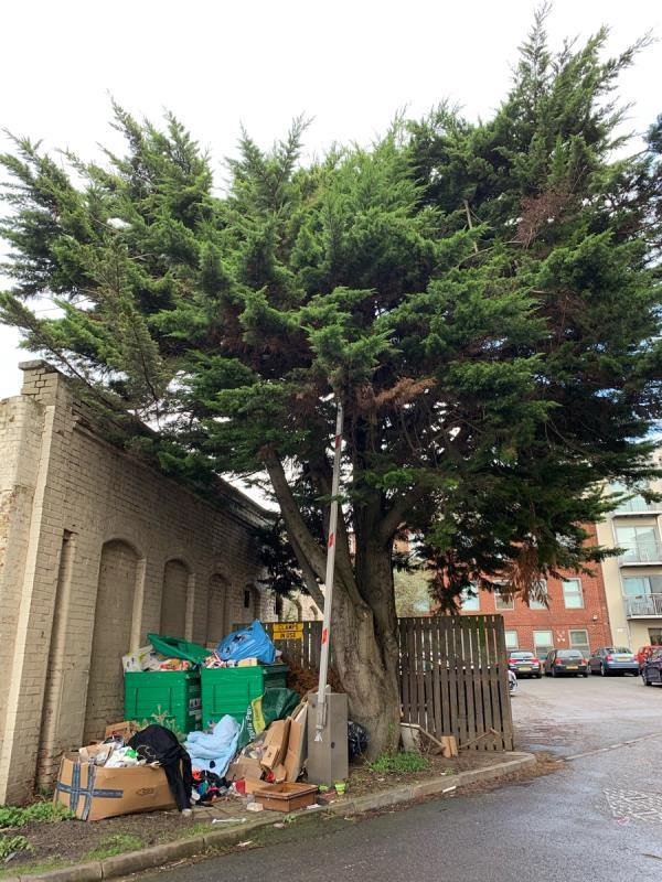 Rubbish dumped around tree.-Nelson Mews St Giles Close, Reading, RG1 2SF