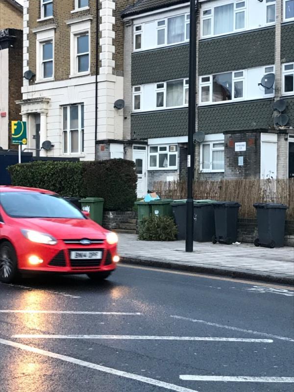 Christmas Tree west mobile -196 Sydenham Road, London, SE26 5RP
