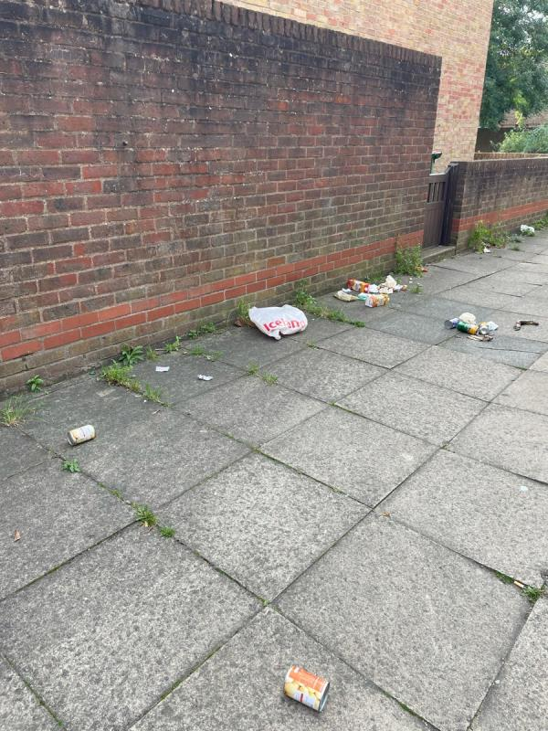 Rubbish dumped outside front of house  image 1-51 Gilbert St, London E15 2AG, UK
