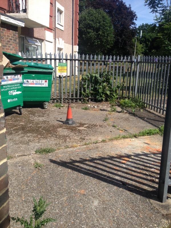 Wash down bin stores-30 Granville Road, Reading, RG30 3QD