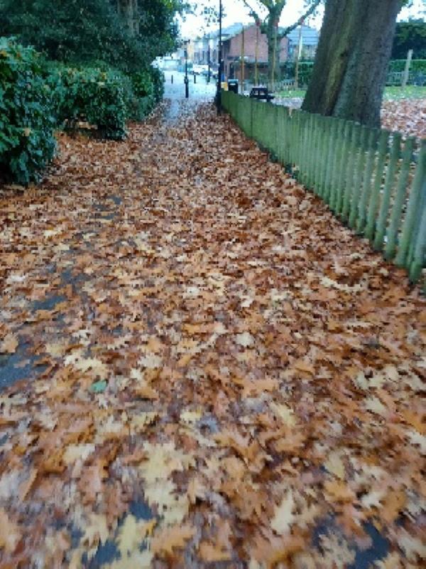 leaf buildup on path, very slippery-11 Laburnum Road, Aldershot, GU11 3DU
