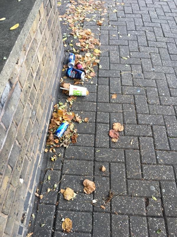 Litter alcohol-355b Romford Road, London, E7 8AA