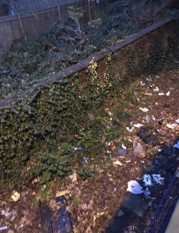 """Litter all under the green footbridge, Earlham grove side. Reported this 17/01/20, job closed as """"street swept"""" please stop this wasting time. Its not completed, more rubbish than ever there. Has it got to be piled high 6ft high with white goods & beer cans again before Newham acts? Horrible sight image 1-6 Forest Ln, Forest Gate, London E7 9BG, UK"""