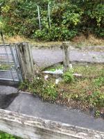 Rubbish still there-A331, Farnborough, GU14 8AQ