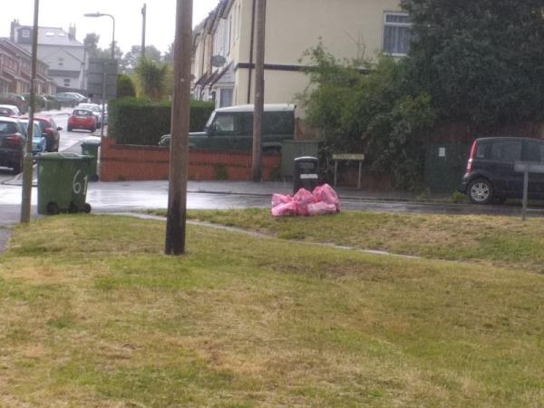 Litter bags left by waste bin for collection.-61 Holly Road, Aldershot, GU12 4RU