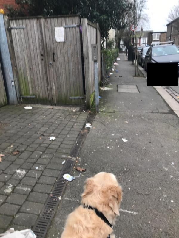 Litter on ground -29 Harold Road, Seven Sisters, N15 4PN