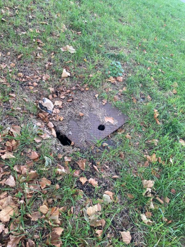 Open pothole in the park opposite 34 Appleby road in Canning Town. Resident walkabout today. -34 Appleby Rd, London E16 1LQ, UK