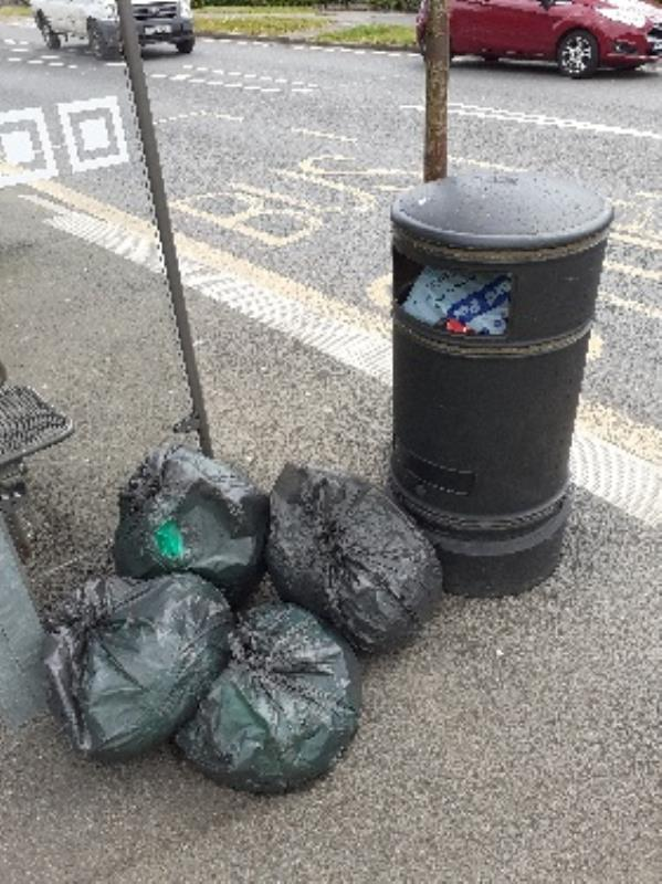 bags of garden waste flytipped bin is full of household waste no evidence taken -152 Southcote Lane, Reading, RG30 3EN