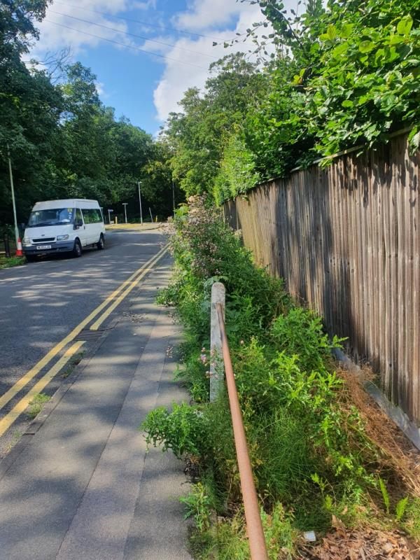 This rubbish has been piled up here for the past few weeks causing bad smell. It's making the road unpleasant. image 1-149 Whiteknights Road, Reading, RG6 7BD