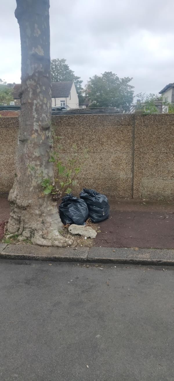 Bin bags-51 Springfield Rd, London E6 2AH, UK