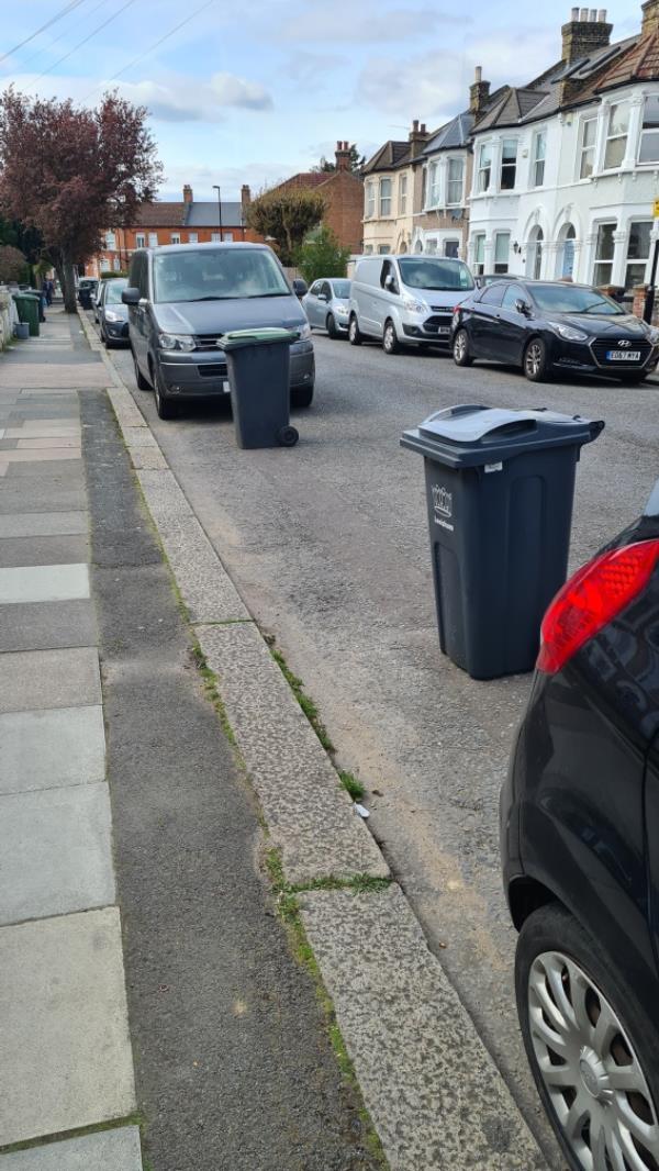 Bins blocking road-16 Fordel Road, London, SE6 1XP