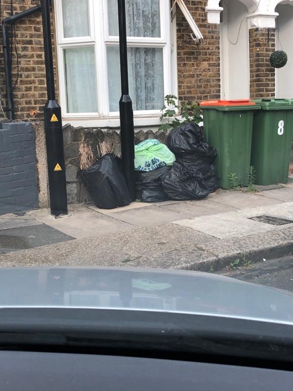 Dumped garden  rubbish -9 Eric Road, London, E7 0AZ