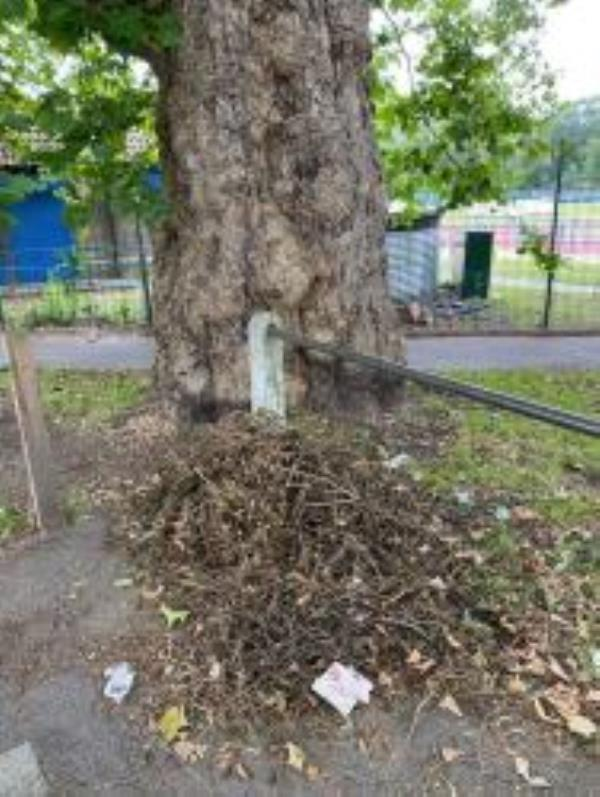 Please clear Flytip of Garden Waste-55a Medusa Road, London, SE6 4JW