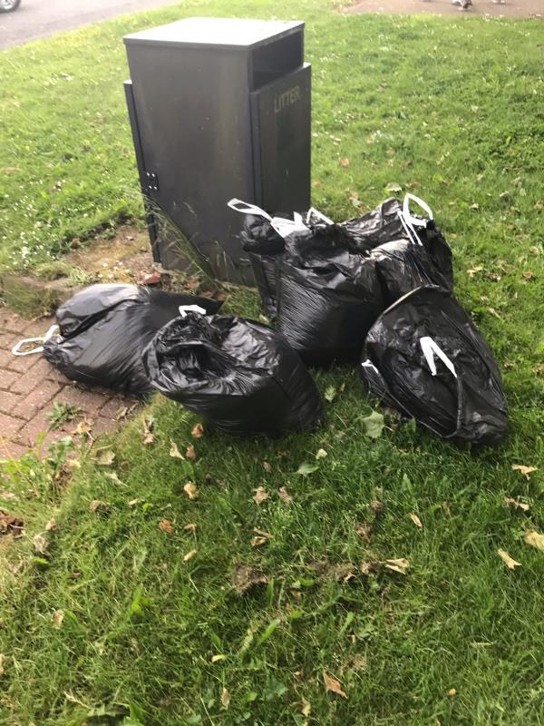 Someone using a Black ( transit type ) Van supporting a roof rack and ladder, has deliberately dumped 7 bags of garden waste on Lincoln Green at 14.30 on Thursday 10th June 2021 -43 Lincoln Green, Wolverhampton, WV10 8HW
