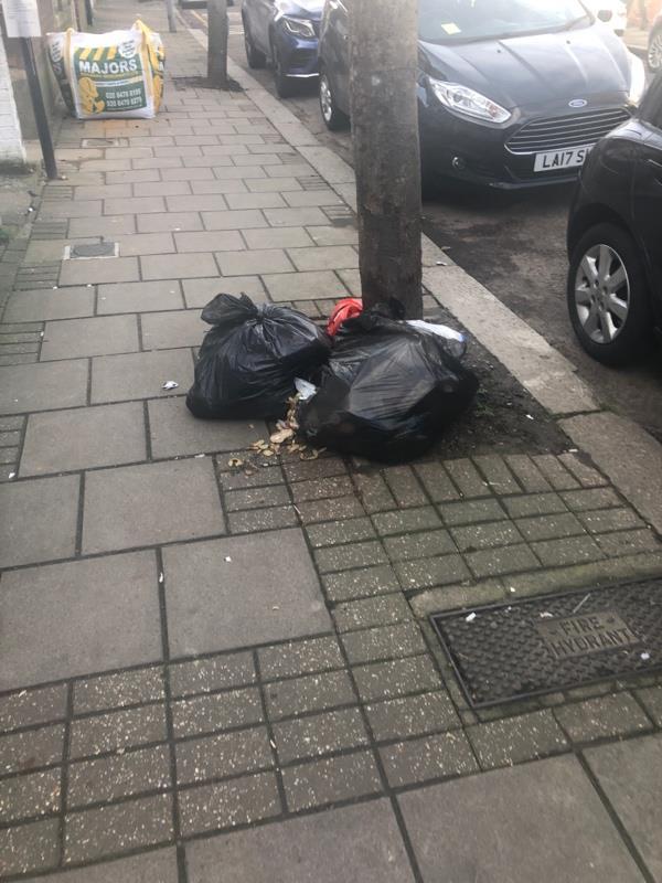 2 x bin bags -15 Bristol Road, London, E7 8