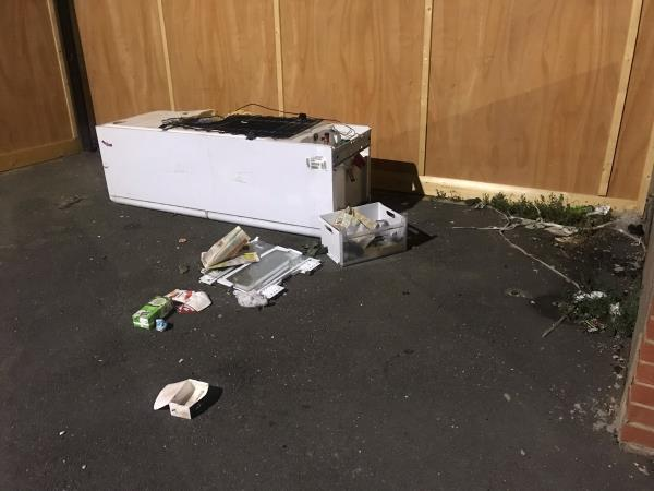 This has been here over two weeks now and people are now leaving more rubbish in the fridge and shelves. I have reported it but it has still not been picked up and becoming a bigger problem as people dump stuff in it and at the sides.-91 Haig Road East, Plaistow, E13 9LP
