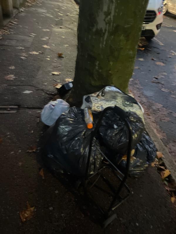 Rubbish -92 Shelley Ave, London E12 6PU, UK