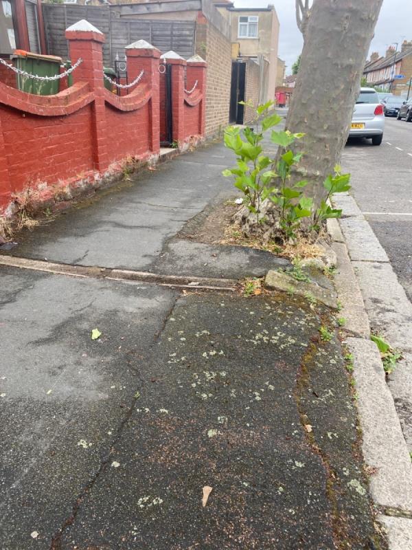 O/S 282 Dersingham Avenue footpath uneven cracked, drainage channel pertruding  -284 Dersingham Avenue, Manor Park, E12 6JY