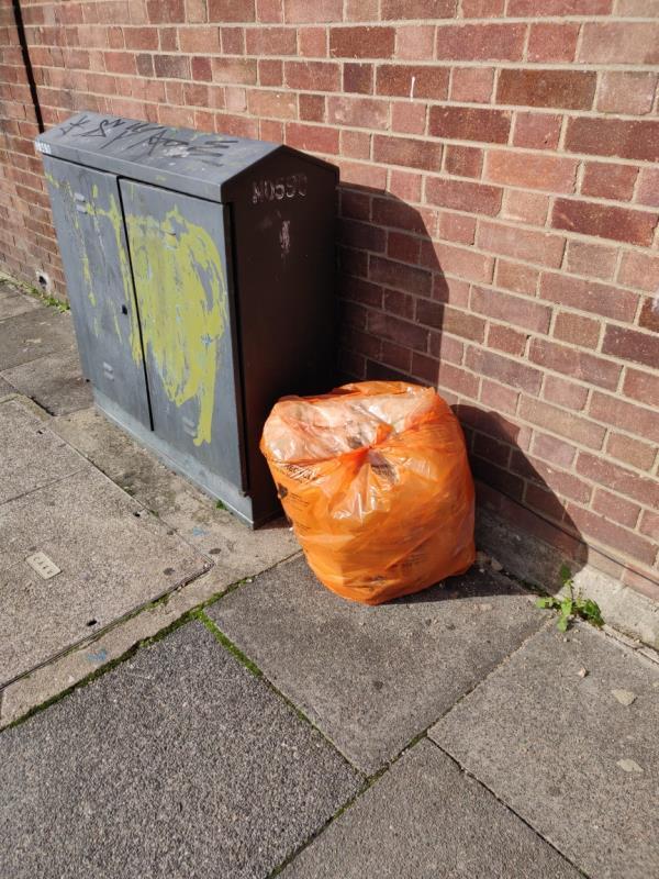 Someone has fly tipped a bad of rubbish-23 Westbury Road, London, E7 8BU