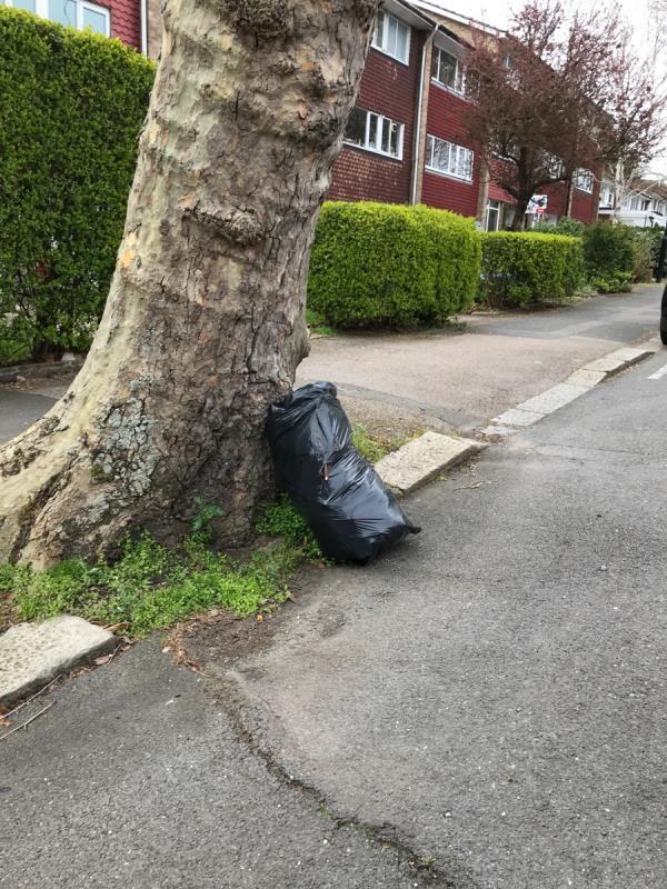 West mobile job bag of garden waste outside no.45 Longton Grove -45 Longton Grove, London, SE26 6QQ