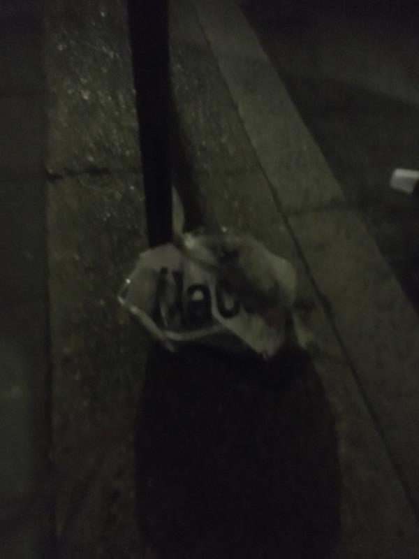 Rubbish -106 Whyteville Road, London, E7 9LT