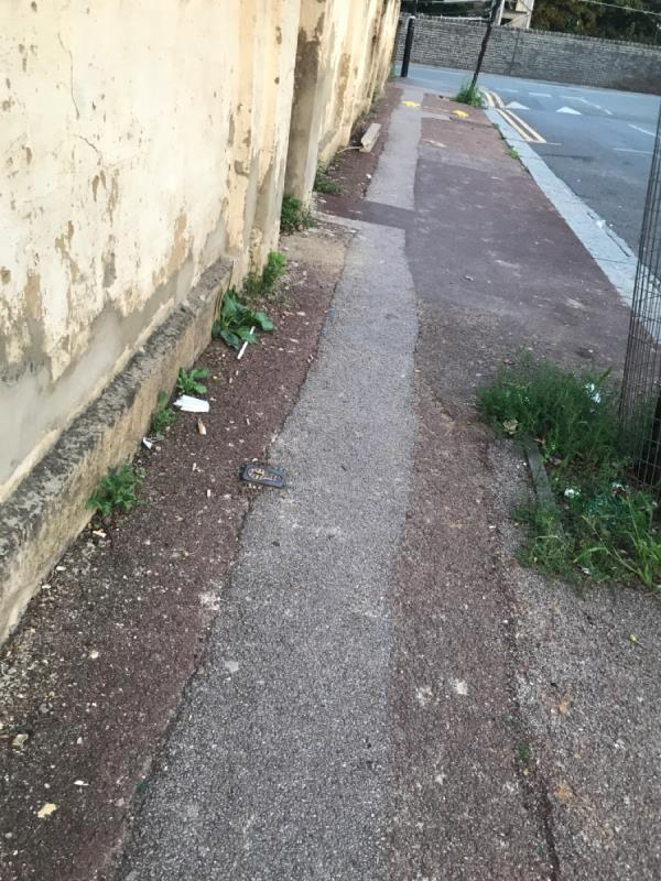 Smashed glass in tree pit, wood and bits dried plaster bits etc left from skip that was removed  image 1-7 Odessa Road, London, E7 9BG