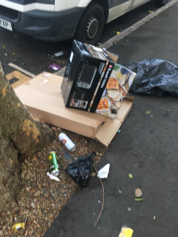 Rubbsih -32 Saint Stephen's Road, East Ham, E6 1AW