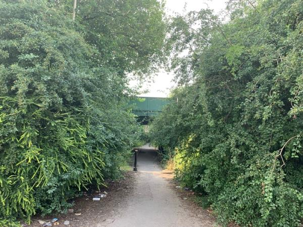 Approach to tunnel between Thurmaston Footpath and Trevino Drive severely overgrown impeding pedestrian access. Area is also covered in litter. -4 Thurmaston Footpath, Leicester, LE4 9FU