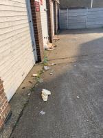 lots of litter  image 1-21 Philip Street, Plaistow, E13 8DL