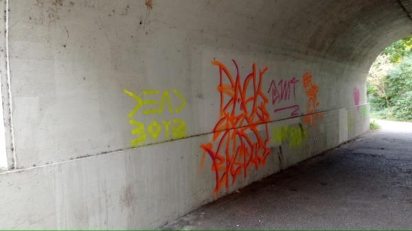 Graffiti under Reading Bridge-4 George Street, Reading, RG1 8DB