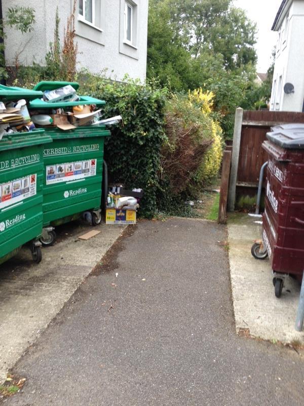 Wash down bin stores-75 Severn Way, Reading, RG30 4HN