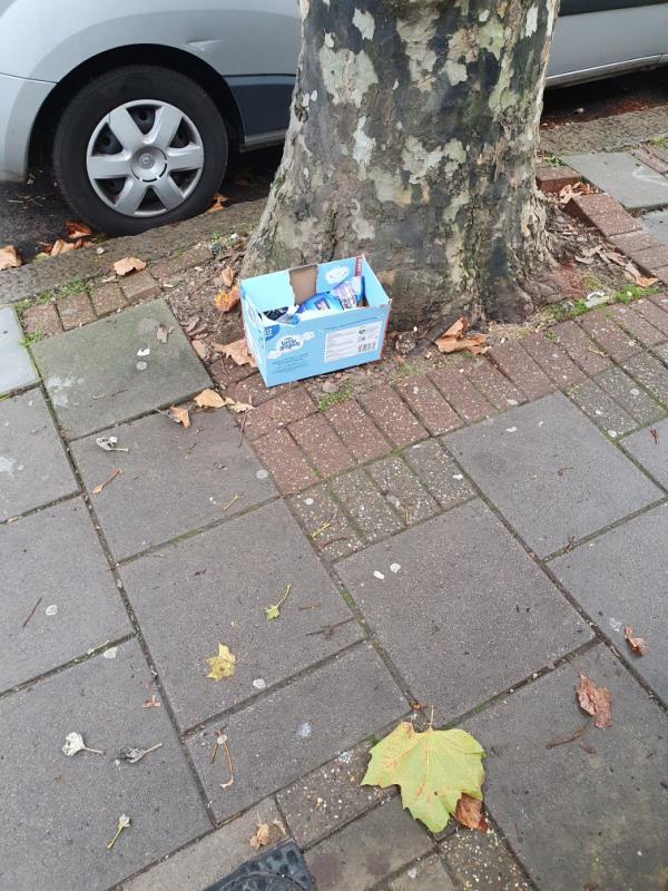 Outside 17 sherrard road e7 8dn someone has left rubbish under tree-15 Sherrard Rd, London E7 8EG, UK