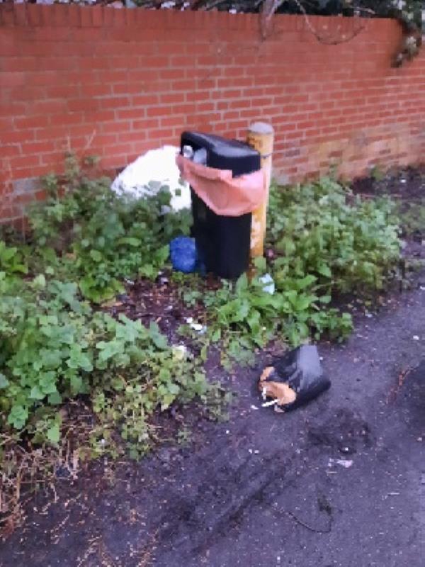 bags of rubbish by litter bin at Parkhouse Lane -22 Maldon Close, Reading, RG30 2DH