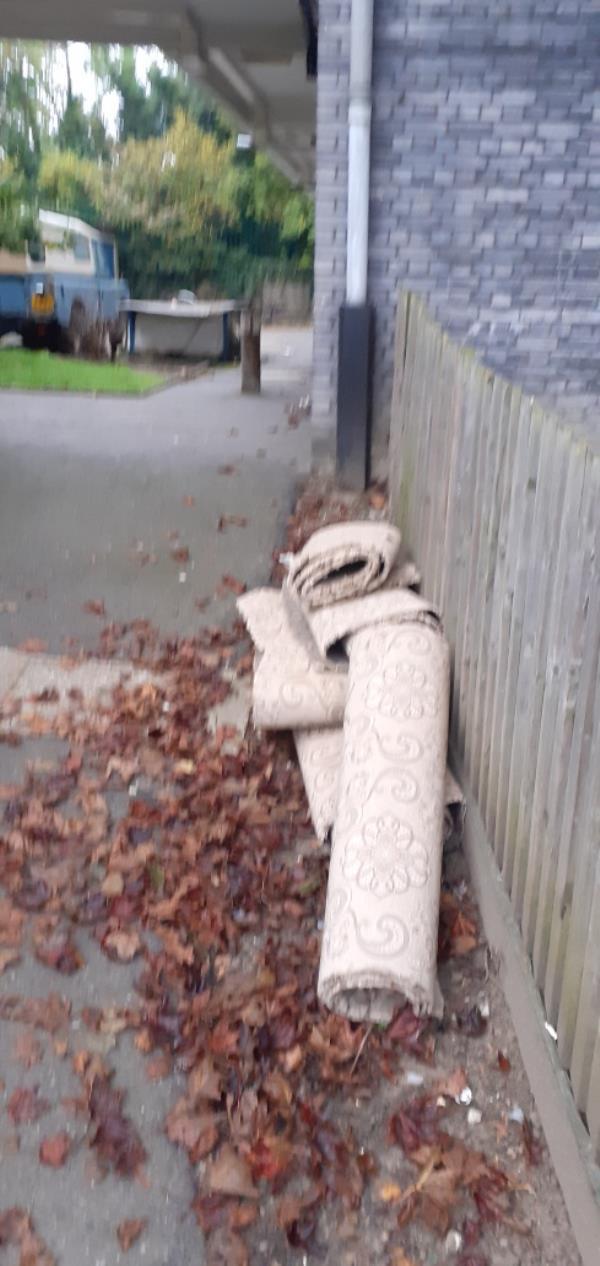 Carpet -1 Drakefell Road, New Cross Gate, SE14 5SL
