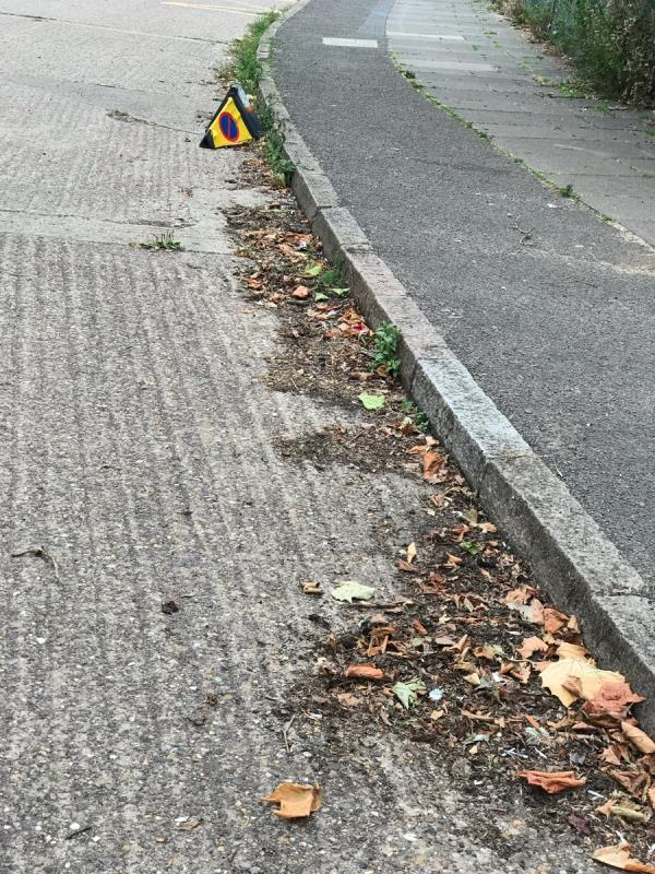 Blocked drains all along this street -233 New Parks Crescent, Leicester, LE3 9NZ