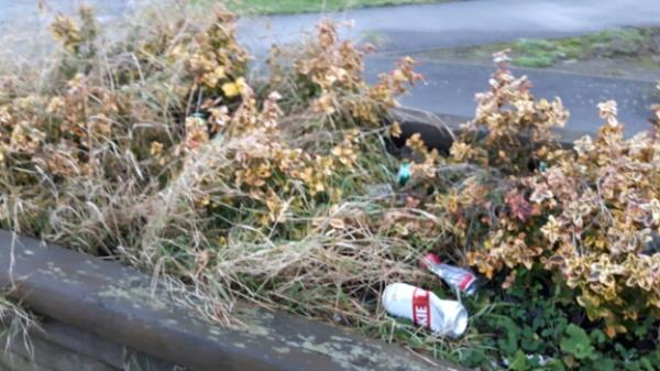 Street drinkers have been leaving their litter again.-2 Pasley Road, Leicester, LE2 9BR