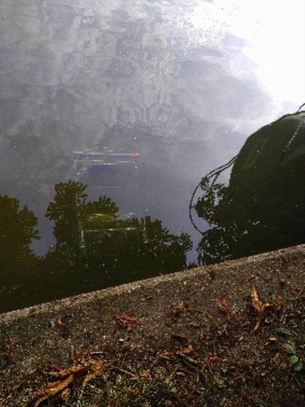 Trolley in River not taken -Caversham Road, Reading, RG4 7TQ