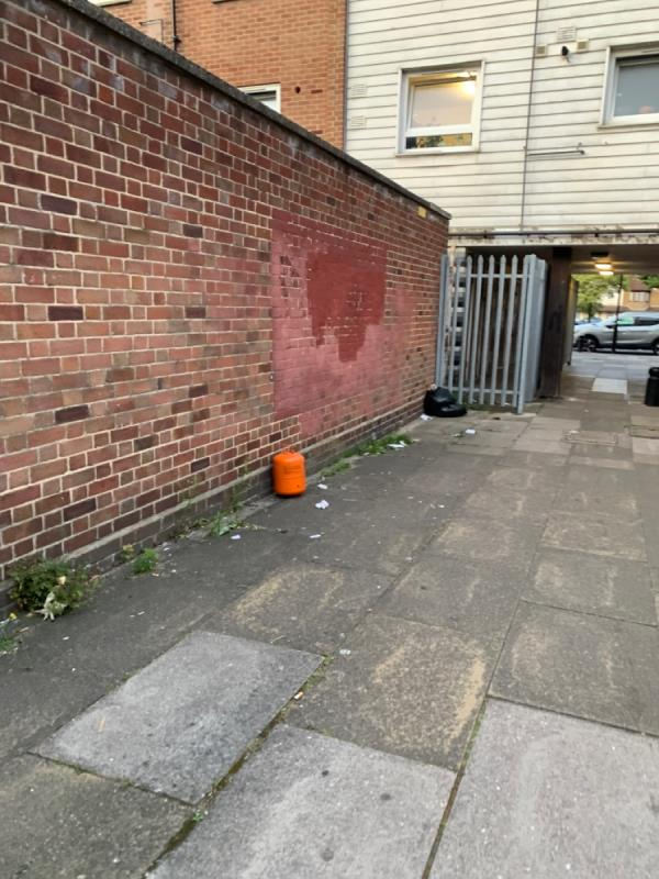 Gas canister and bags left in passage-81 Parr Road, East Ham, E6 1QQ